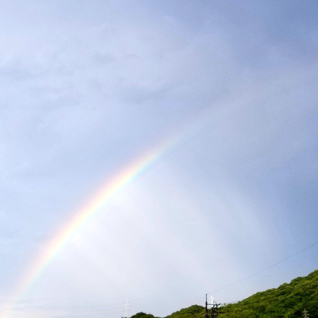 青空に虹が浮かんだ画像